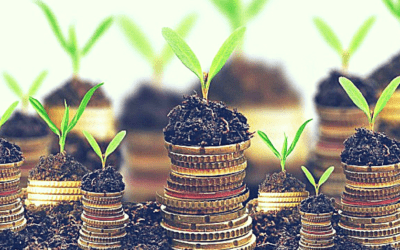 Effective Ways to Financially Prepare for Expansion | YRC